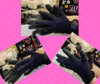 Grooming Gloves Review - Tina Bs World